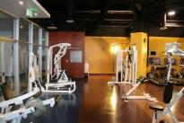 21. Gym