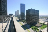 61. Rooftop View