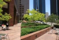 34. Plaza