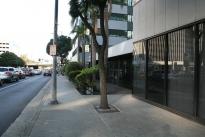 3. Exterior