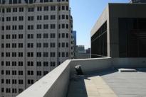 54. Rooftop