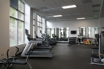 65. Gym