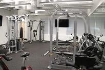 382. Gym