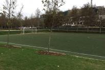 53. Soccer Field