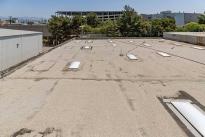 129. Rooftop