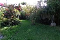 32. Backyard