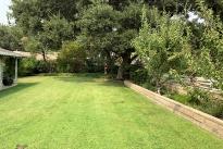 40. Backyard