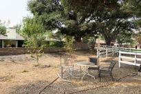42. Backyard