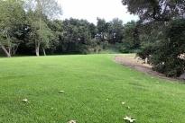 87. Park