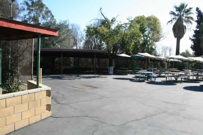 85. Lunch Area
