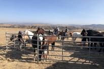 104. Ranch