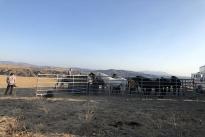 111. Ranch