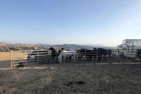 112. Ranch