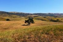 18. Ranch