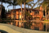 137. Backyard