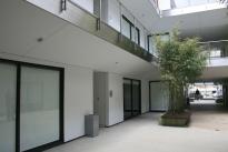 11. Interior Courtyard