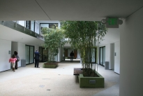 9. Interior Courtyard