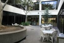 25. Courtyard